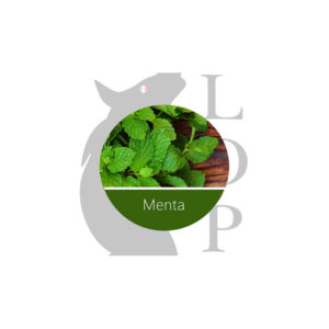 AROMA CONCENTRATO MENTA by Lop - Vape Area